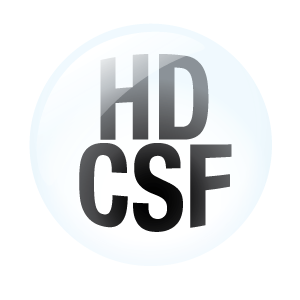 hdcsf-logo-for-light-background-300